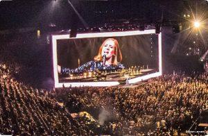 Movecat bei Adele