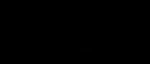 Wige Logo