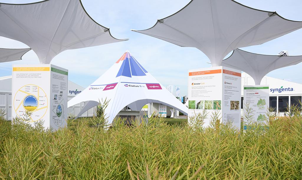 Freiheitblau unterstützt das Wachstum von Syngenta