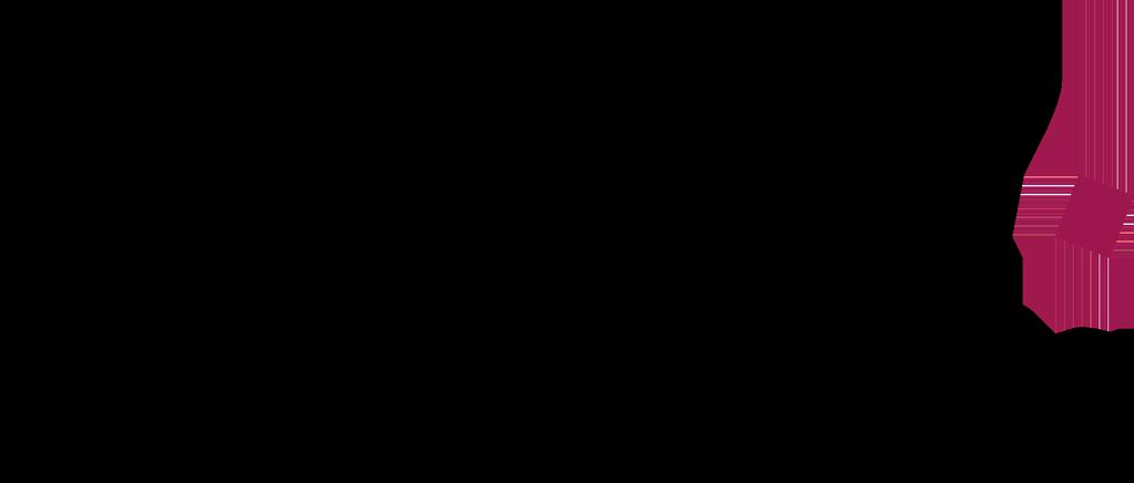 Logo Tough Solutions